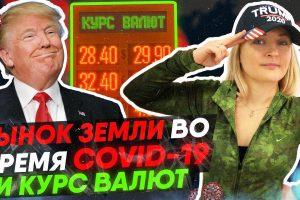 Бизнес Фея про рынок земли в Украине.