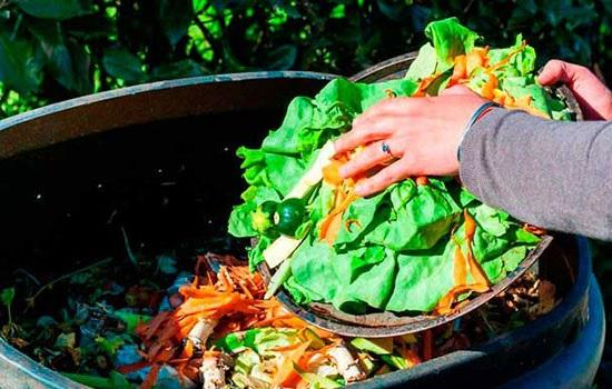 сокращение пищевых отходов